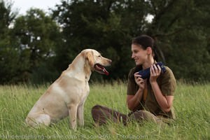 Frau mit Labrador-Retriever beim Dummytraining